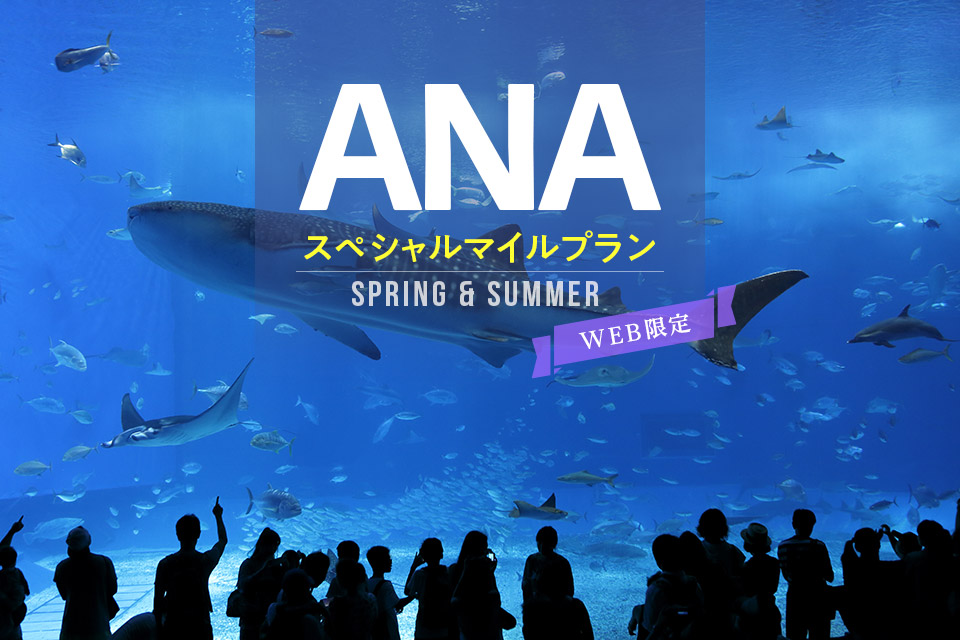 2020 Spring・Summer AMCスペシャルマイルプラン【食事なし】